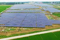 湖北追日光伏老河口仙人渡40MWp(一期20MWp)农光互补光伏电站EPC总承包项目