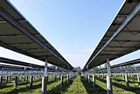 浙江合大汉川脉旺30MWp农光互补光伏电站EPC总承包项目